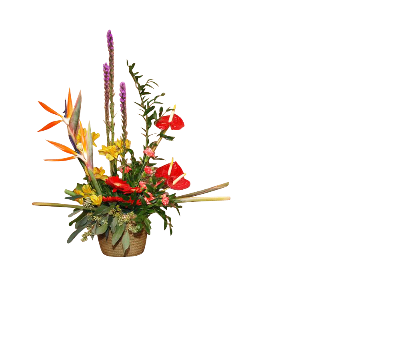 WICKER BASKET ARRANGEMENT