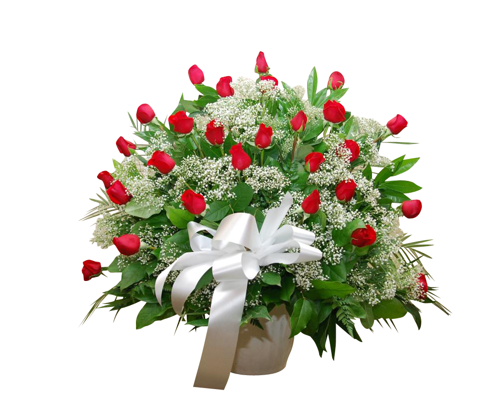 Red Rose Tribute 30 Red Roses B.B.